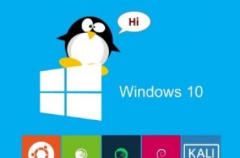 windows 10 run linux